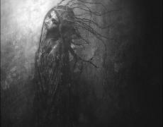 """Immortally Insane"" By Pierre-Alain D"