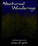 An Introduction to Nocturnal Wanderings